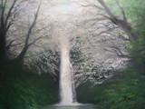 春爛漫の滝