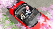 【RAY-GO静画祭Vol.6】見上げる春桜