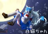 旅する白猫ちゃん