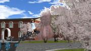【RAY-GO SEIGA FESTIVAL Vol.6】 桜と雪風とウルトラ