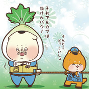 有機農業の日でした