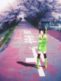 京町セイカ『桜ロード』