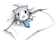 布団を占領する酒匂猫