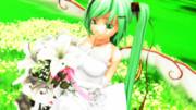 4月の花嫁