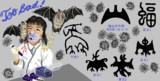 漢字の成り立ち「蝠 フク」