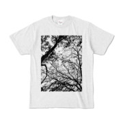 Tシャツ アッシュ FOREST_MORI