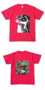 Tシャツ ホットピンク TTペンギン