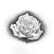 薔薇 点描画
