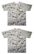 Tシャツ フルグラフィック 石膏