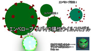 【MMD-OMF10】エンベロープ・スパイク+ウイルスモデル(ES+V)