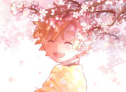 木漏れ日桜