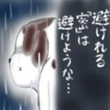 すねこすり~涙雨