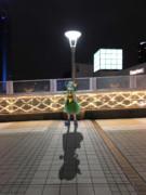 新宿のこいしちゃん
