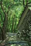 栂尾山・高山寺の石垣