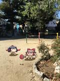 公園で遊ぶゆっくりさんたち