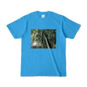 Tシャツ ターコイズ Photo-Bure-Nature