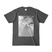 Tシャツ チャコール GREEN_ROAD