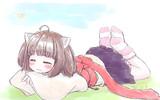野生のきりたん ~おやすみ~