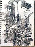 【お絵描き】動物を描いてみた!
