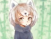 レッサーパンダちゃん