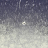 雨の中のちっこぱす
