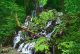 初夏の布滝