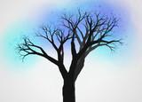 不思議な木2