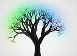 不思議な木3