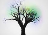不思議な木4