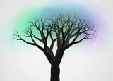 不思議な木7