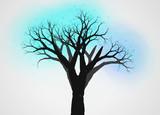 不思議な木9