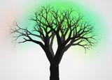 不思議な木10