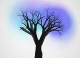 不思議な木14