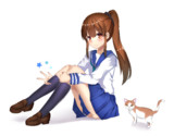 体育座りをしている女の子と猫