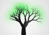 不思議な木19