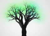 不思議な木20