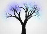 不思議な木24