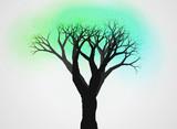 不思議な木25