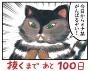100日後に抜くネコ