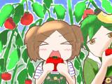 クラマくーん!おっきいトマトあった!!