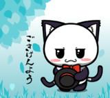 ポジティブ猫ヤミーくん  「ごきげんよう」