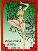 ドラクエ3「魔法のビキニ」武闘家