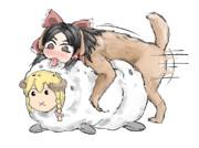 発情期SNNN犬