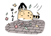 落ち葉と競争!