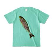 Tシャツ アイスグリーン BANANA_SAKANA