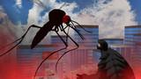 ガメラ対蚊