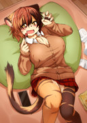 三毛猫ちゃん