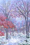 晩秋 雪紅葉❄️