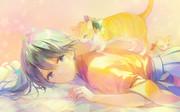 お疲れ気味の鳳翔さんに、マッサージ猫が派遣されました