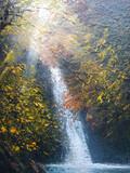 日溜まりの滝